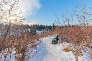 Photo 9: 911 BLACKETT Wynd in Edmonton: Zone 55 House for sale : MLS®# E4224950