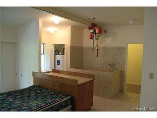 Photo 6: 4405 Majestic Dr in VICTORIA: SE Gordon Head Single Family Detached for sale (Saanich East)  : MLS®# 638665