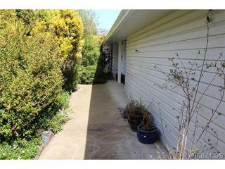 Photo 15: 4405 Majestic Dr in VICTORIA: SE Gordon Head House for sale (Saanich East)  : MLS®# 638665