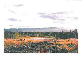 """Photo 13: LOT 7 BELL Place in Mackenzie: Mackenzie -Town Land for sale in """"BELL PLACE"""" (Mackenzie (Zone 69))  : MLS®# N227300"""