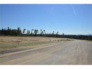 """Photo 3: LOT 7 BELL Place in Mackenzie: Mackenzie -Town Land for sale in """"BELL PLACE"""" (Mackenzie (Zone 69))  : MLS®# N227300"""