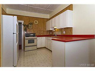 Photo 7: 2226 Oregon Ave in VICTORIA: Vi Fernwood Single Family Detached for sale (Victoria)  : MLS®# 502437