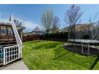 Photo 20: 27908 BUFFER CRESCENT in Abbotsford: House for sale : MLS®# R2050857