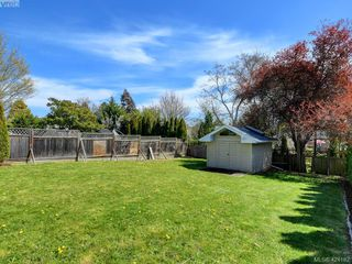 Photo 37: 3067 Albina St in VICTORIA: SW Gorge House for sale (Saanich West)  : MLS®# 837748