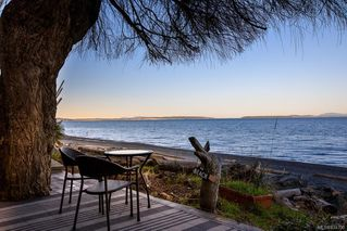 Photo 39: 5051 Cordova Bay Rd in Saanich: SE Cordova Bay Single Family Detached for sale (Saanich East)  : MLS®# 834390