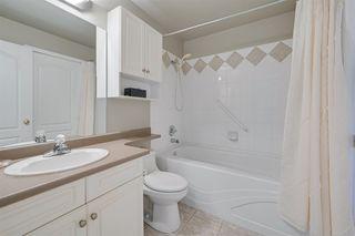 Photo 10: 114 6623 172 Street in Edmonton: Zone 20 Condo for sale : MLS®# E4218781