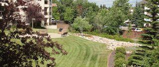 Photo 19: 114 6623 172 Street in Edmonton: Zone 20 Condo for sale : MLS®# E4218781