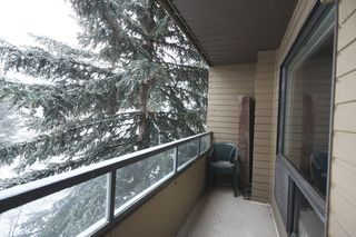 Photo 30: 301 - 3747 42 Street NW in Calgary: Varsity Village Condo for sale : MLS®# C3548115