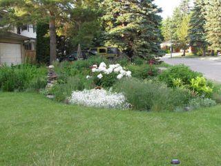Photo 4: 87 Thatcher Drive in WINNIPEG: Fort Garry / Whyte Ridge / St Norbert Residential for sale (South Winnipeg)  : MLS®# 1308215