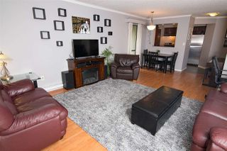 Photo 1: 411 1210 PACIFIC STREET in Coquitlam: North Coquitlam Condo for sale : MLS®# R2116009