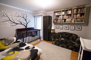 Photo 5: 411 1210 PACIFIC STREET in Coquitlam: North Coquitlam Condo for sale : MLS®# R2116009