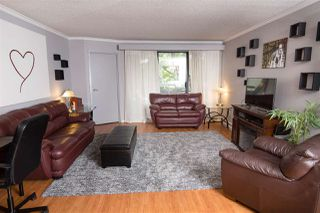Photo 10: 411 1210 PACIFIC STREET in Coquitlam: North Coquitlam Condo for sale : MLS®# R2116009