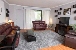 Photo 9: 411 1210 PACIFIC STREET in Coquitlam: North Coquitlam Condo for sale : MLS®# R2116009