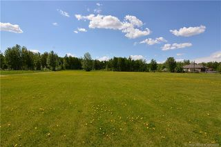Main Photo: 130 44101 RANGE ROAD 214 in Rural Camrose County: Land for sale : MLS®# CA0192628