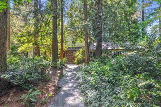 Main Photo: 4193 206A Street in Langley: Brookswood Langley House for sale : MLS®# R2457676