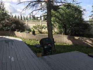 Photo 11:  in Edmonton: Zone 16 House Half Duplex for sale : MLS®# E4203187