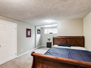 Photo 32: 106 Abalone Place NE in Calgary: Abbeydale Semi Detached for sale : MLS®# A1039180