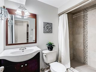 Photo 35: 106 Abalone Place NE in Calgary: Abbeydale Semi Detached for sale : MLS®# A1039180