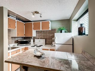 Photo 29: 106 Abalone Place NE in Calgary: Abbeydale Semi Detached for sale : MLS®# A1039180
