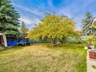 Photo 46: 106 Abalone Place NE in Calgary: Abbeydale Semi Detached for sale : MLS®# A1039180