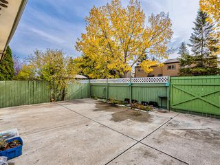 Photo 40: 106 Abalone Place NE in Calgary: Abbeydale Semi Detached for sale : MLS®# A1039180