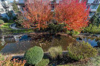 "Photo 25: 309 6688 120 Street in Surrey: West Newton Condo for sale in ""ZEN AT SALUS"" : MLS®# R2512506"