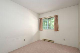 """Photo 21: 204 2963 BURLINGTON Drive in Coquitlam: North Coquitlam Condo for sale in """"BURLINGTON ESTATES"""" : MLS®# R2517945"""