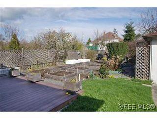 Photo 14: 2413 Mowat St in VICTORIA: OB Henderson House for sale (Oak Bay)  : MLS®# 599535