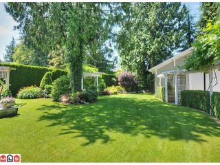 "Photo 8: 4451 212 Street in Langley: Brookswood Langley House for sale in ""Cedar Ridge"" : MLS®# F1218845"