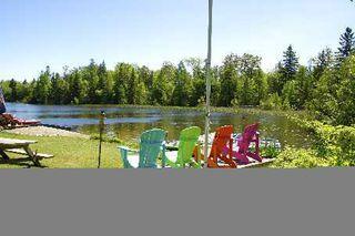Photo 8: 59 Cedar Bay Road in Kawartha Lakes: Rural Carden House (2-Storey) for sale : MLS®# X2704272