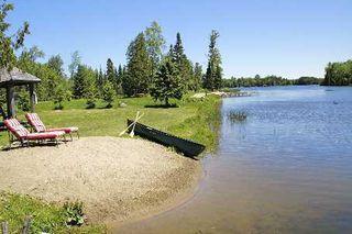 Photo 9: 59 Cedar Bay Road in Kawartha Lakes: Rural Carden House (2-Storey) for sale : MLS®# X2704272