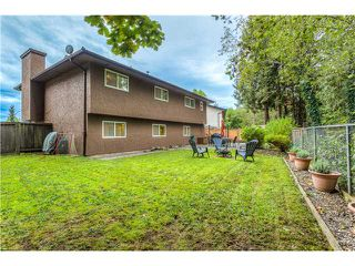 Photo 20: 20880 HUNTER PL in Maple Ridge: Southwest Maple Ridge House for sale : MLS®# V1091221