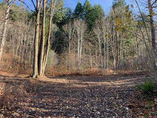 Photo 3: 21782 UNION BAR Road in Hope: Hope Kawkawa Lake Land for sale : MLS®# R2421522