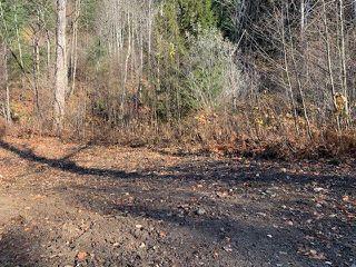 Photo 2: 21782 UNION BAR Road in Hope: Hope Kawkawa Lake Land for sale : MLS®# R2421522