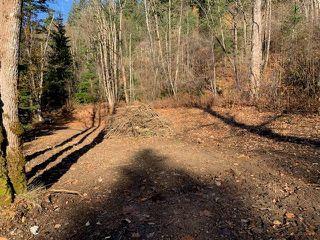 Photo 1: 21782 UNION BAR Road in Hope: Hope Kawkawa Lake Land for sale : MLS®# R2421522