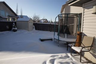 Photo 37: 7407 170 Avenue in Edmonton: Zone 28 House for sale : MLS®# E4188171