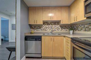 Photo 18: 505 27 Canniff Street in Toronto: Niagara Condo for sale (Toronto C01)  : MLS®# C4746219