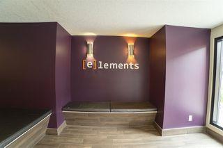 Photo 4: 313 340 WINDERMERE Road in Edmonton: Zone 56 Condo for sale : MLS®# E4213558
