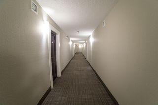 Photo 5: 313 340 WINDERMERE Road in Edmonton: Zone 56 Condo for sale : MLS®# E4213558