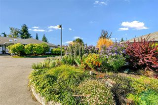 Photo 30: 3 1717 Blair Ave in : SE Lambrick Park Row/Townhouse for sale (Saanich East)  : MLS®# 856505