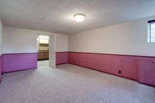 Photo 20: 307 26 Avenue NE in Calgary: Tuxedo Park Detached for sale : MLS®# A1039987