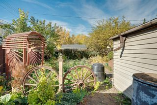 Photo 36: 307 26 Avenue NE in Calgary: Tuxedo Park Detached for sale : MLS®# A1039987