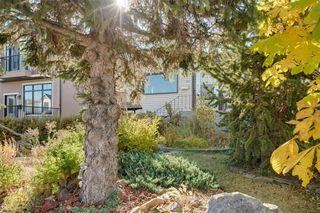 Photo 37: 307 26 Avenue NE in Calgary: Tuxedo Park Detached for sale : MLS®# A1039987