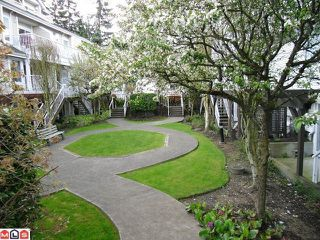 "Photo 39: 18 9036 208TH Street in Langley: Walnut Grove Townhouse for sale in ""Hunter's Glen"" : MLS®# F1211739"
