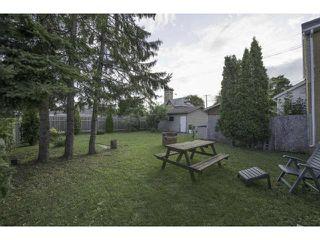 Photo 4: 826 Manitoba Avenue in WINNIPEG: North End Residential for sale (North West Winnipeg)  : MLS®# 1216948