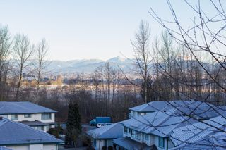 Photo 46: 63 34250 Hazelwood in Abbotsford: Multifamily for sale : MLS®# R2346864