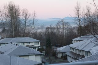 Photo 56: 63 34250 Hazelwood in Abbotsford: Multifamily for sale : MLS®# R2346864