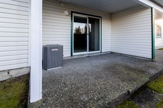 Photo 49: 63 34250 Hazelwood in Abbotsford: Multifamily for sale : MLS®# R2346864