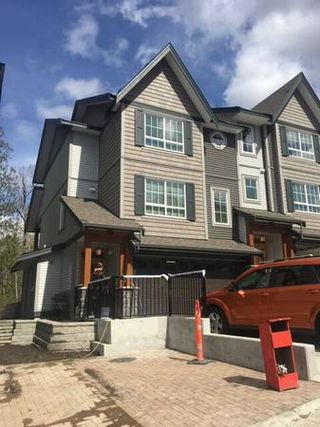 Main Photo: 23539 Gilker Hill Road in Maple Ridge: Townhouse for rent