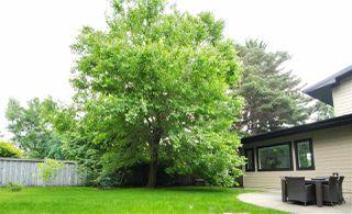 Photo 14: 8503 139 Street in Edmonton: Zone 10 House for sale : MLS®# E4167944